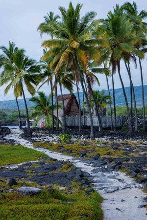 Pu'uhonua O Honaunau National Historical Park : Reconstructed Temple