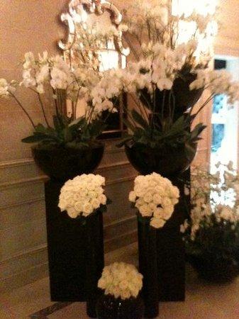 Le Cinq : les orchidees