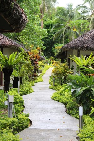 CoCo Beach Resort: The winding path through the resort