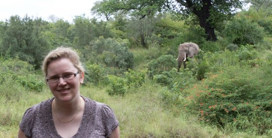 Ulusaba Safari Lodge : From our balcony
