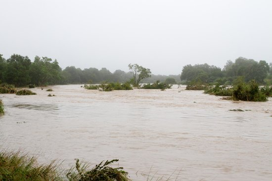 Ulusaba Safari Lodge: River in flood