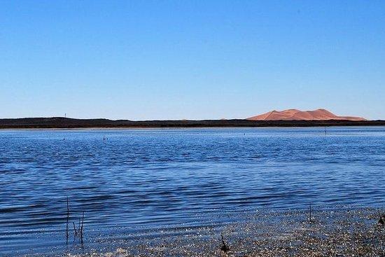 Desert Guide Private Day Tours: lac de merzouga