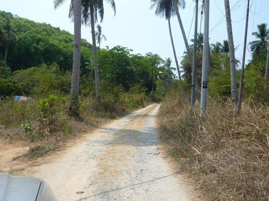Pondok Keladi Guest House: Le chemin d'accès à Pondok Keladi