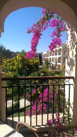Jaz Mirabel Park : Stunning flowers on the balcony