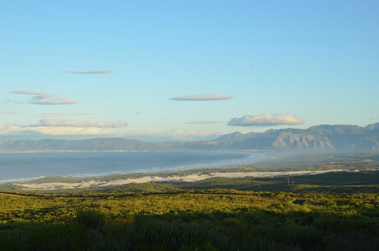 Grootbos Private Nature Reserve: View from room