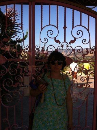 Madonna Inn: Pool gate