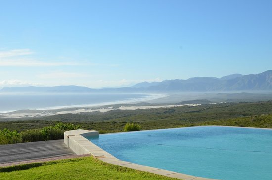 Grootbos Private Nature Reserve: Pool area