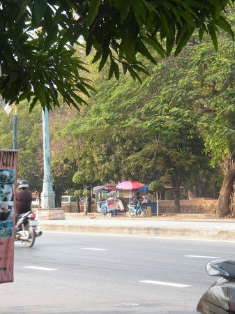 Tamarind : view across the road