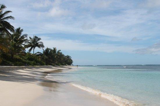 Puerto Rico playa Flamenco