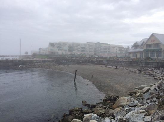 The Sidney Pier Hotel & Spa: beach side, too cold for March swim!
