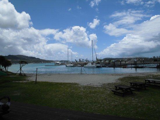 Motobu Genki Village : この景色!ここで護岸釣り体験。