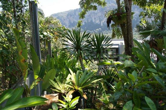 Krabi Cha-Da Resort: Территория