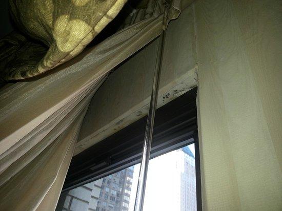 Hotel Edison Times Square : Champignons dans la chambre