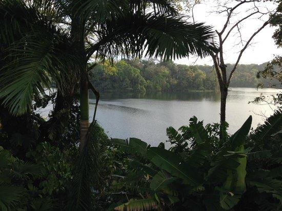 Melia Panama Canal: Vista al lago desde el Hotel