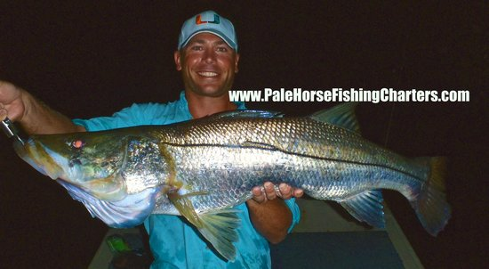 Pale Horse Fishing Charters