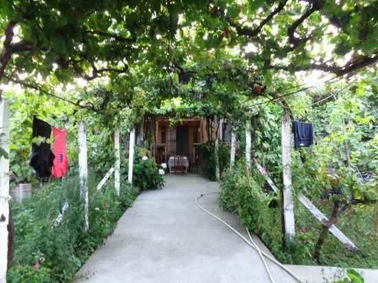Florian Shkodra Guesthouse and Hostel: Garten (Blick Richtung Haus)