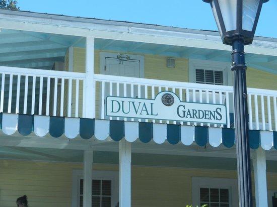 Coq en libert dans les rues Photo de Duval Gardens Key West