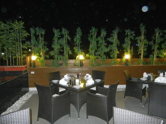 Leisure Inn Grand Chanakya: roof top restaurent