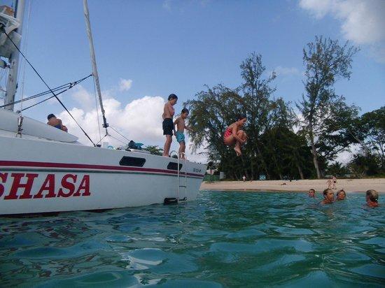 Shasa Catamaran Cruises : plouf