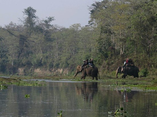 Breakfree Adventures - Private Day Tours: Elephant ride