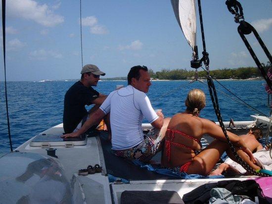 Shasa Catamaran Cruises : cata