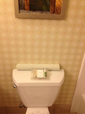 Hilton Garden Inn Houston / Sugar Land: Available toiletries.