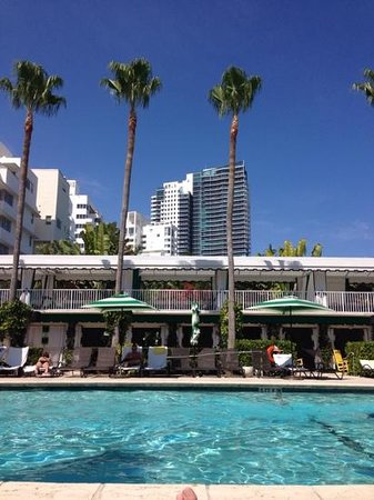 Kimpton Surfcomber Hotel : view from pool deck