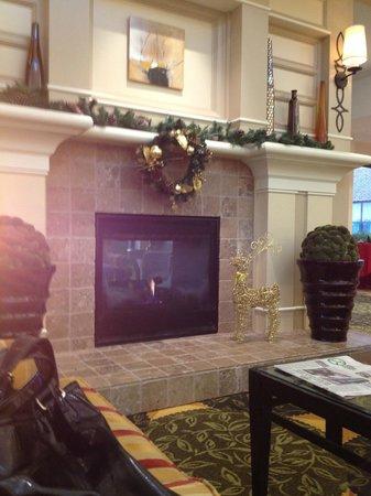 Hilton Garden Inn Houston / Sugar Land: Lobby#2