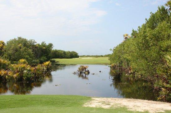 Riviera Cancun Golf: Chaque parcours a sa particularité