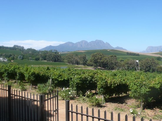 The Restaurant at Clos Malverne: View from dining room