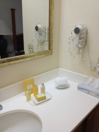 Sonesta ES Suites Houston : Sink / vanity area.