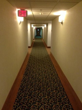 Sleep Inn Staunton: Hallways were very clean.