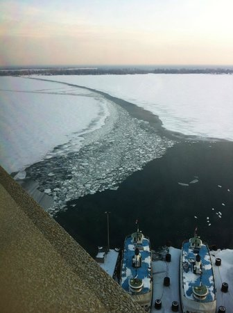 The Westin Harbour Castle: View from the 23rd floor towards Ward's Island