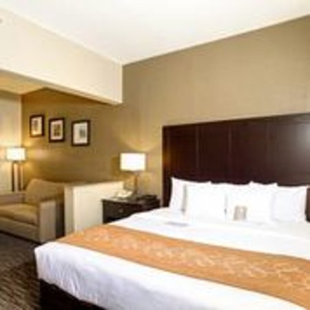 King Bed Suite Picture Of Comfort Suites Clearwater