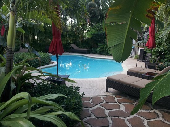 Casa Grandview West Palm Beach: Pool