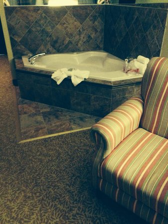 Holiday Inn Express & Suites Wyomissing: Jacuzzi