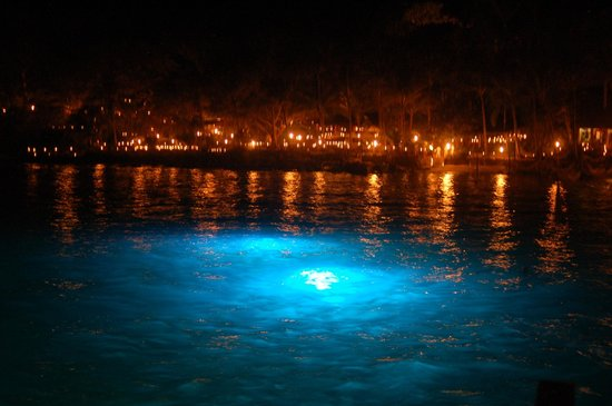 Rhythms of the Night by Vallarta Adventures: View from the boat of Las Caletas