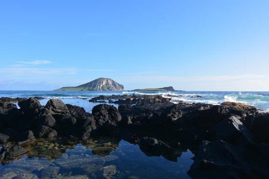 Oahu Photography Tours: Rabbit Island 2014