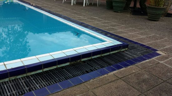Hotel Tree of Life : Renovierungsbedürftiger Pool