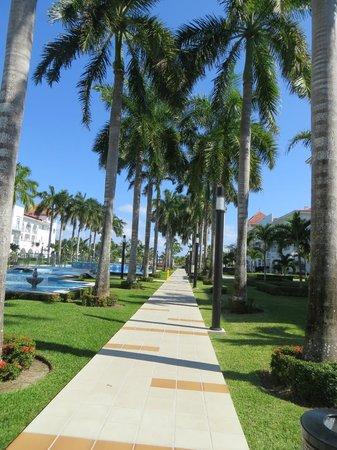 Hotel Riu Palace Mexico: Walk to beach