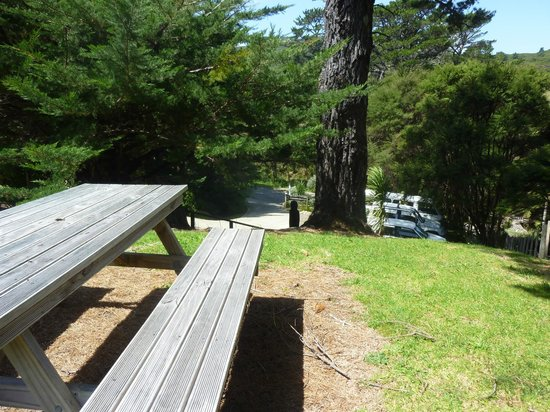 Aotea Lodge: Outdoor seating