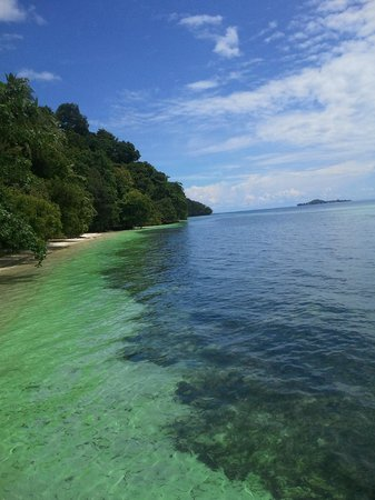 Blick vor dem bungalow picture of raja ampat dive resort - Dive resort raja ampat ...