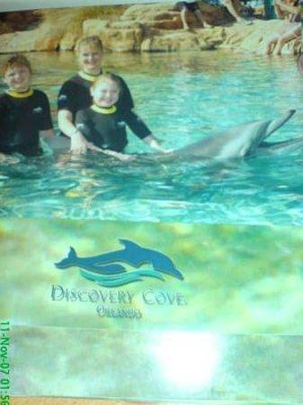 Discovery Cove: Beki's dolphin swim <3