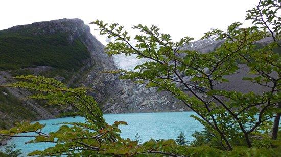 Glaciar Huemul : Vista del lago y el brazo del glaciar