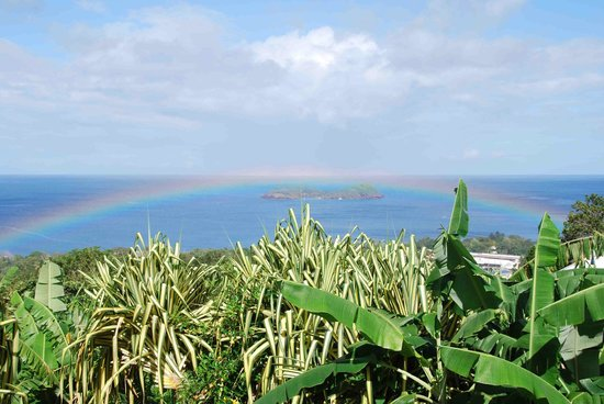 Gwadalodge : Morning showers mean wonderful rainbows from the terrace