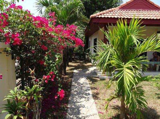 Sansuko Ville Bungalow Resort: Jardin