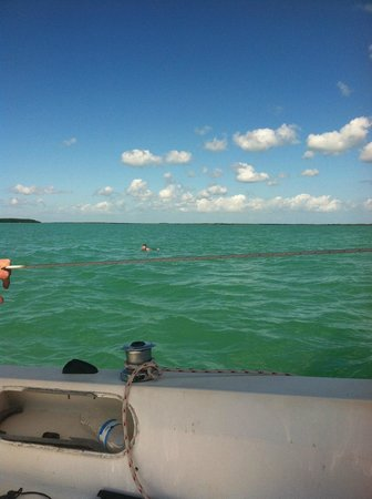Key Lime Sailing Club and Cottages : beautiful blue water