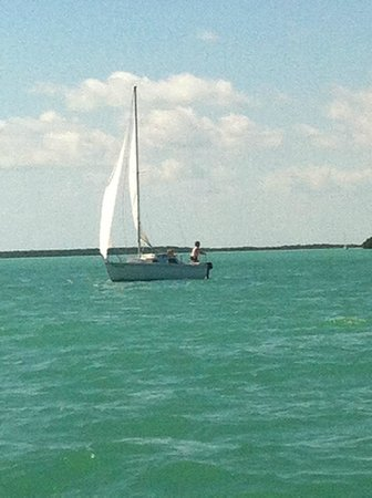 Key Lime Sailing Club and Cottages : Sailing in Buttonwood Sound