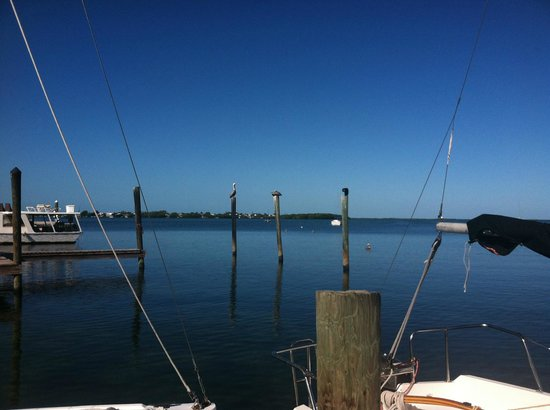Key Lime Sailing Club and Cottages: view from Tiki Hut