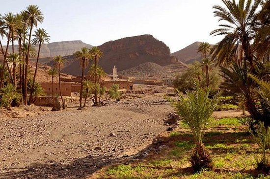 IndiGo Safari Morocco - Private Day Tours: ait benhaddout tours in morocco